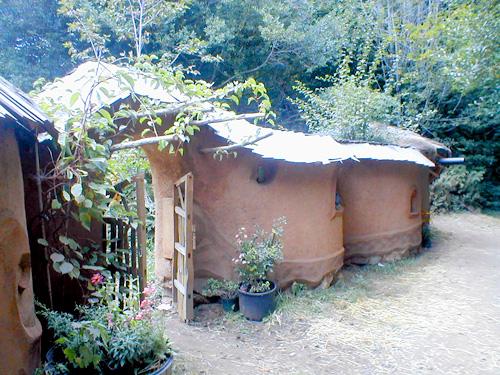 Cob Walls