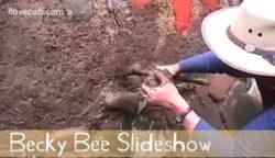 beckybee_slideshow